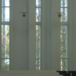 100101窓から見る木